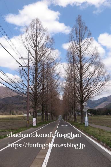イースターのおうちバル&琵琶湖の桜散歩_c0326245_11393203.jpg