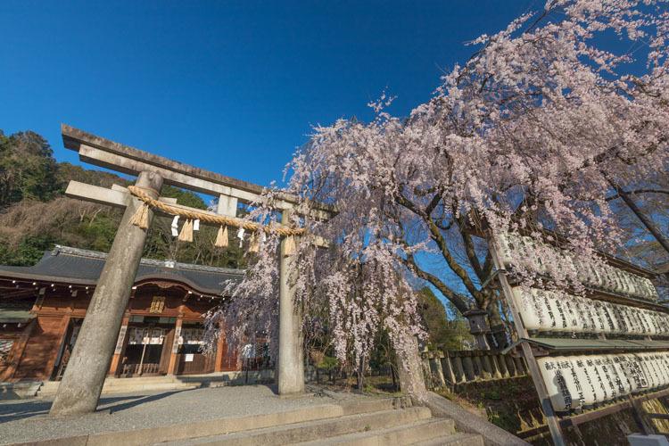 大石神社_e0051888_18563258.jpg