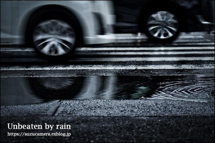 雨ニモ負ケズ_f0100215_22481813.jpg