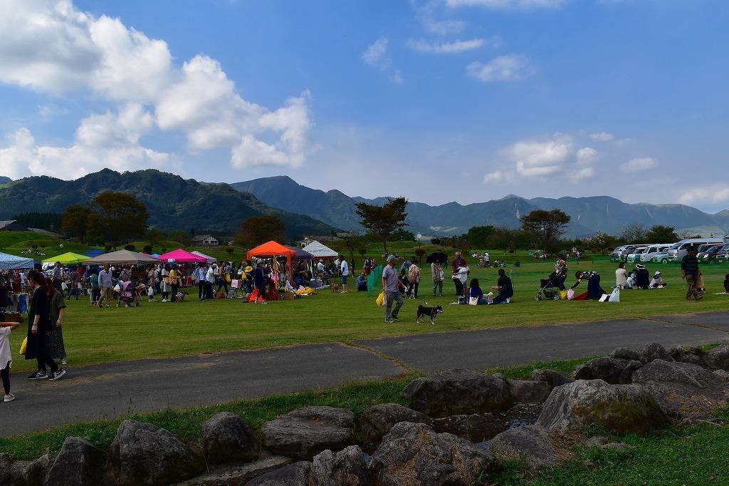 「KUMAMOTO犬フェス〜犬力あげちゃおう!〜」_f0174419_20112452.jpg