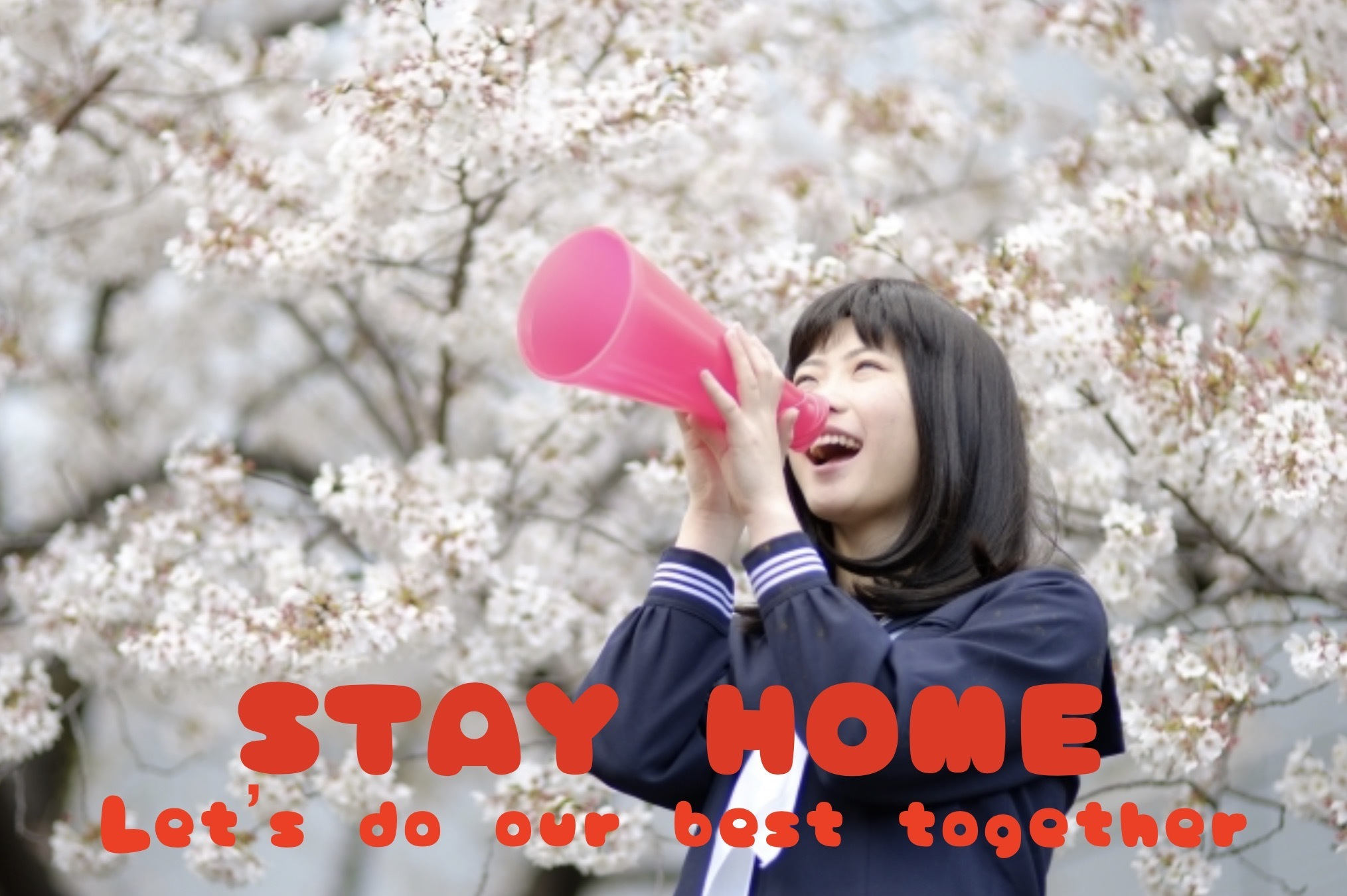 STAY HOME_c0400420_16182884.jpeg