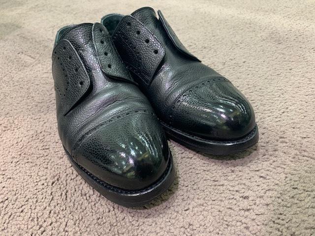 おうちで靴磨き選手権_b0226322_13490004.jpeg