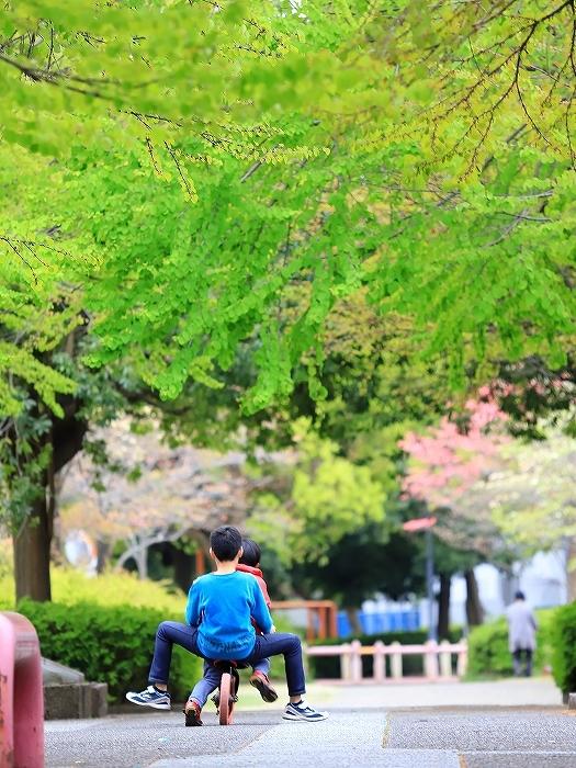 近所の春(2)_f0348831_18010710.jpg