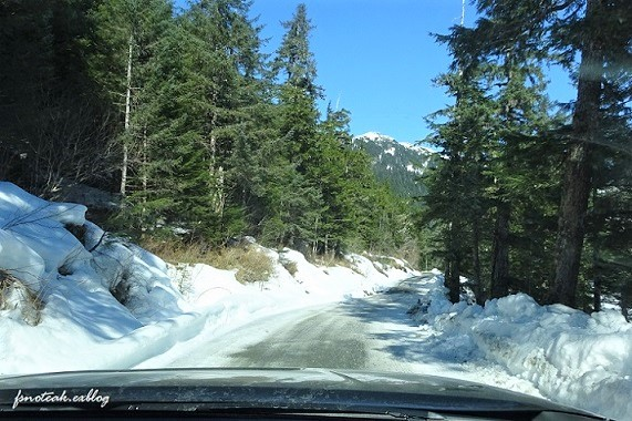 残雪 凍った道_d0356844_12482146.jpg