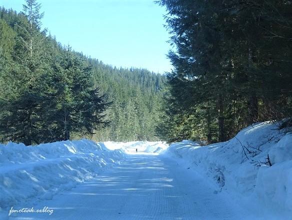 残雪 凍った道_d0356844_12504886.jpg