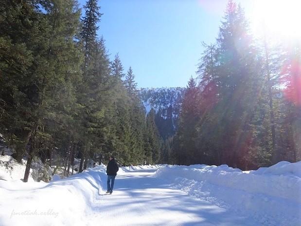 残雪 凍った道_d0356844_12555922.jpg
