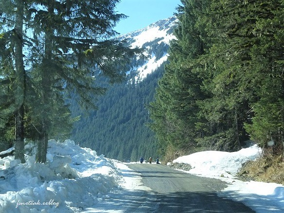 残雪 凍った道_d0356844_13002586.jpg