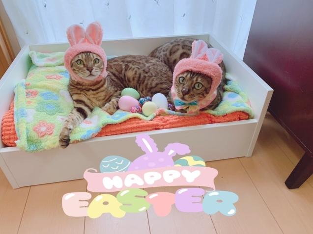 HAPPY EASTER! _c0006748_17253470.jpg