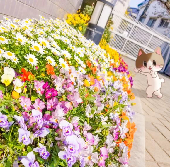 Twitter日記のまとめ_a0201203_15565270.jpg