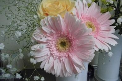 おうちでカラーセラピー♪【ピンク】_c0200917_17032596.jpg