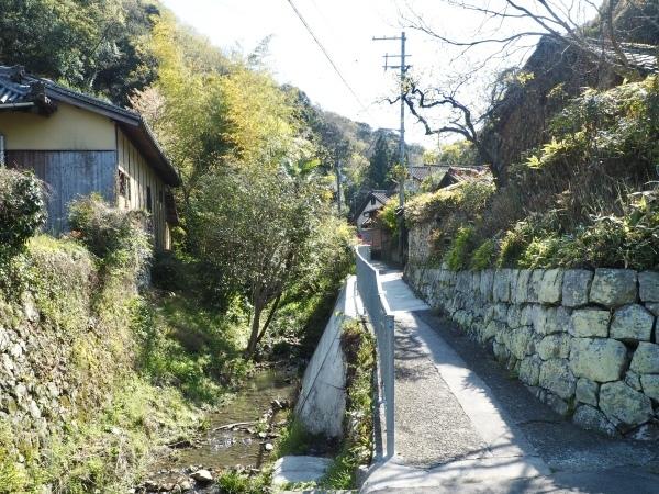 みさき里山クラブ活動地・孝子の森_c0239329_21564672.jpeg