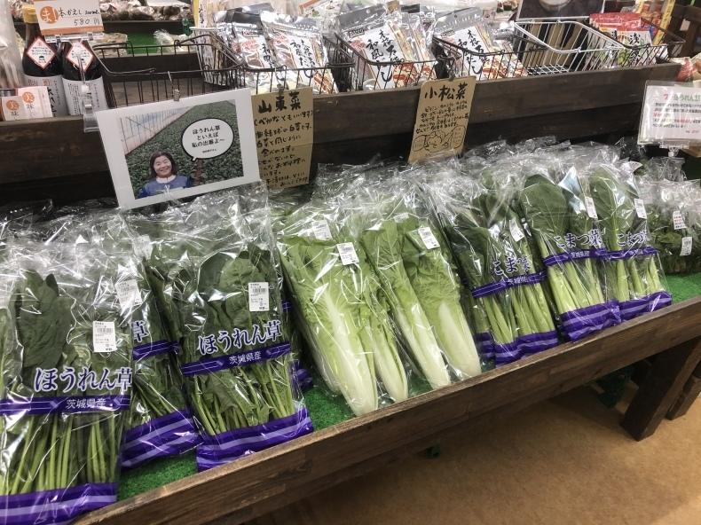 大洗まいわい市場 本日も新鮮お野菜入荷中!_a0283448_11011637.jpeg