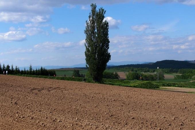 丘の風景_b0106766_22003887.jpg