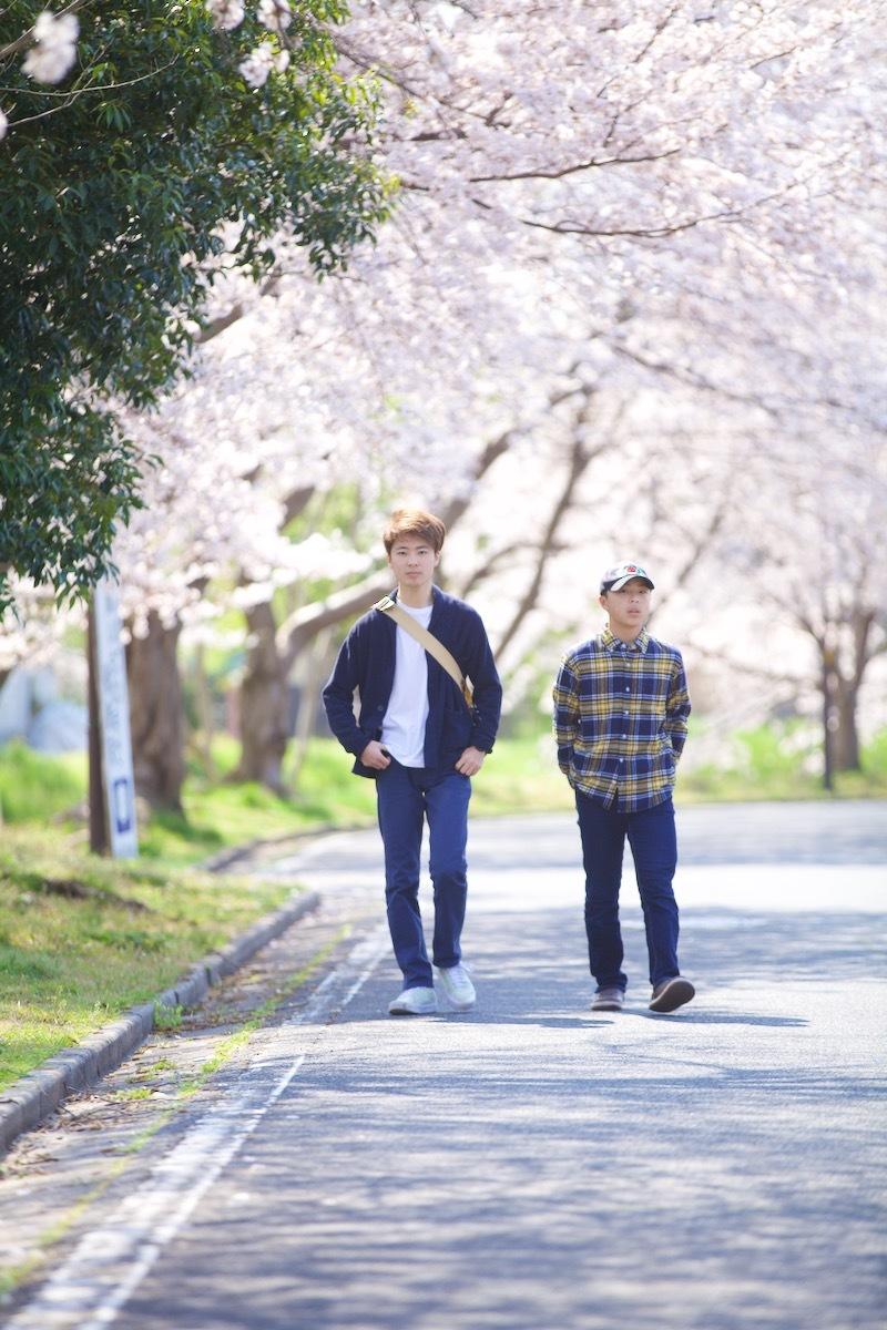 桜咲く_c0163369_12503528.jpeg