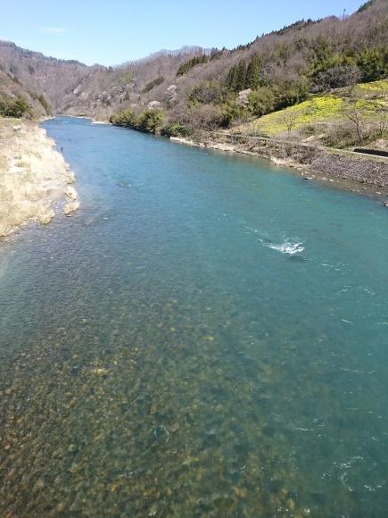 釣りに行くべきか行かないべきか…_c0157482_11094436.jpg