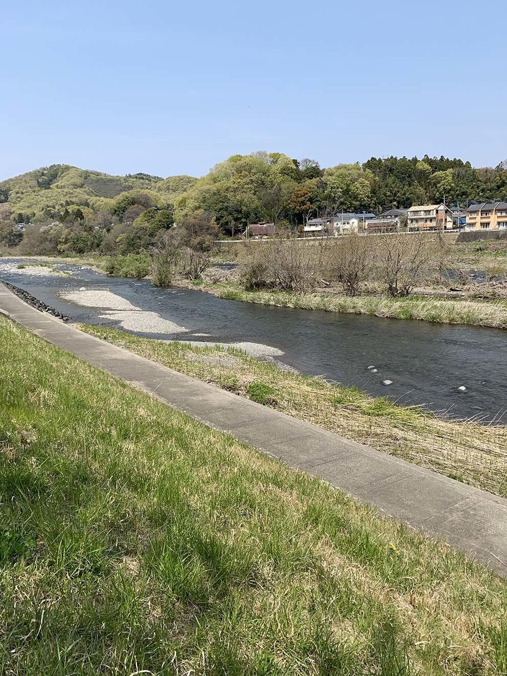 渡良瀬川の近況_c0095801_22564215.jpg