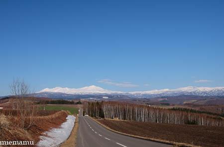 大雪連峰と…~4月の就実の丘_d0340565_20213598.jpg
