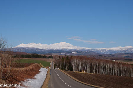 大雪連峰と…~4月の就実の丘_d0340565_20214206.jpg