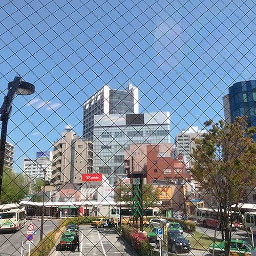 やっと〜〜〜〜_d0128697_3203727.jpg