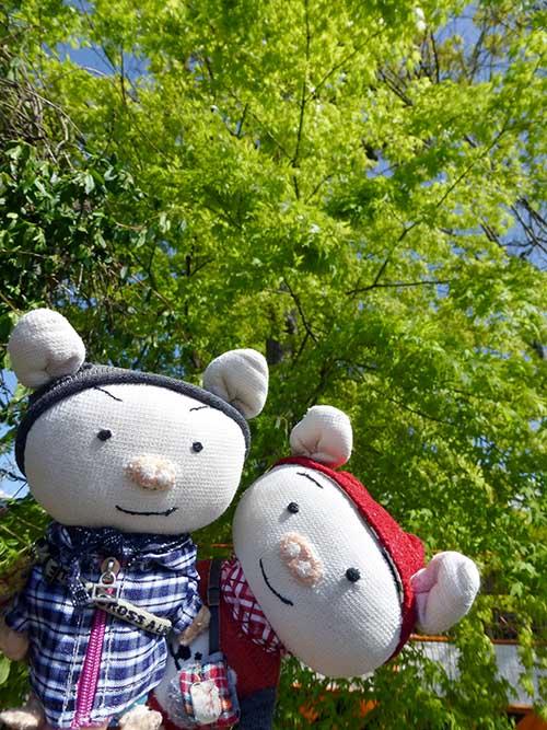 やっと〜〜〜〜_d0128697_3515984.jpg