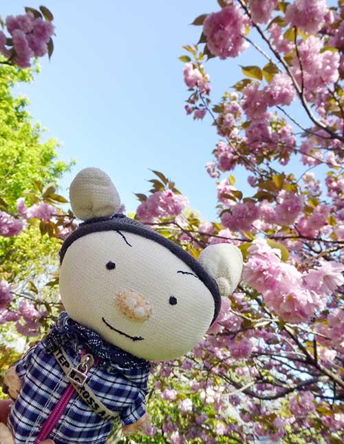 やっと〜〜〜〜_d0128697_432628.jpg