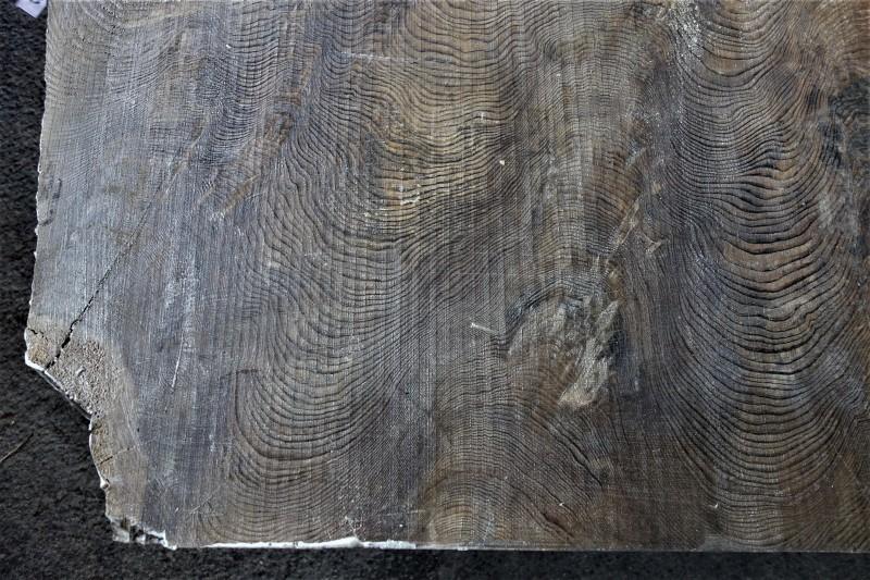 神代杉の塊 厚盤_e0156341_09212263.jpg