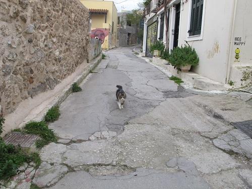 アテネ市から動物保護のための外出許可書をもらう。_f0037264_21084406.jpg