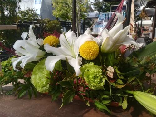 綺麗なお花が!_a0111166_06373386.jpg