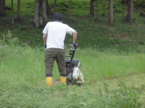 各農家へのホームステイ(農作業実習)_a0208976_15130840.jpg