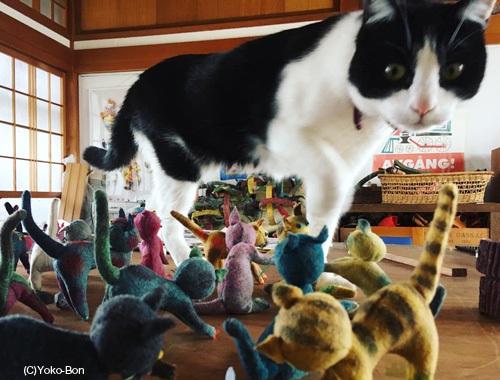 ねこ、ネコ、猫!〜離れのアトリエより〜_d0077603_10521827.jpg