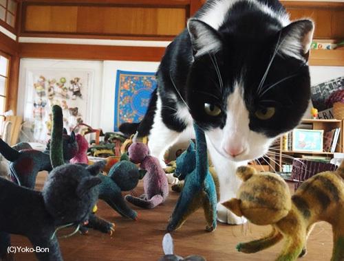 ねこ、ネコ、猫!〜離れのアトリエより〜_d0077603_10533642.jpg