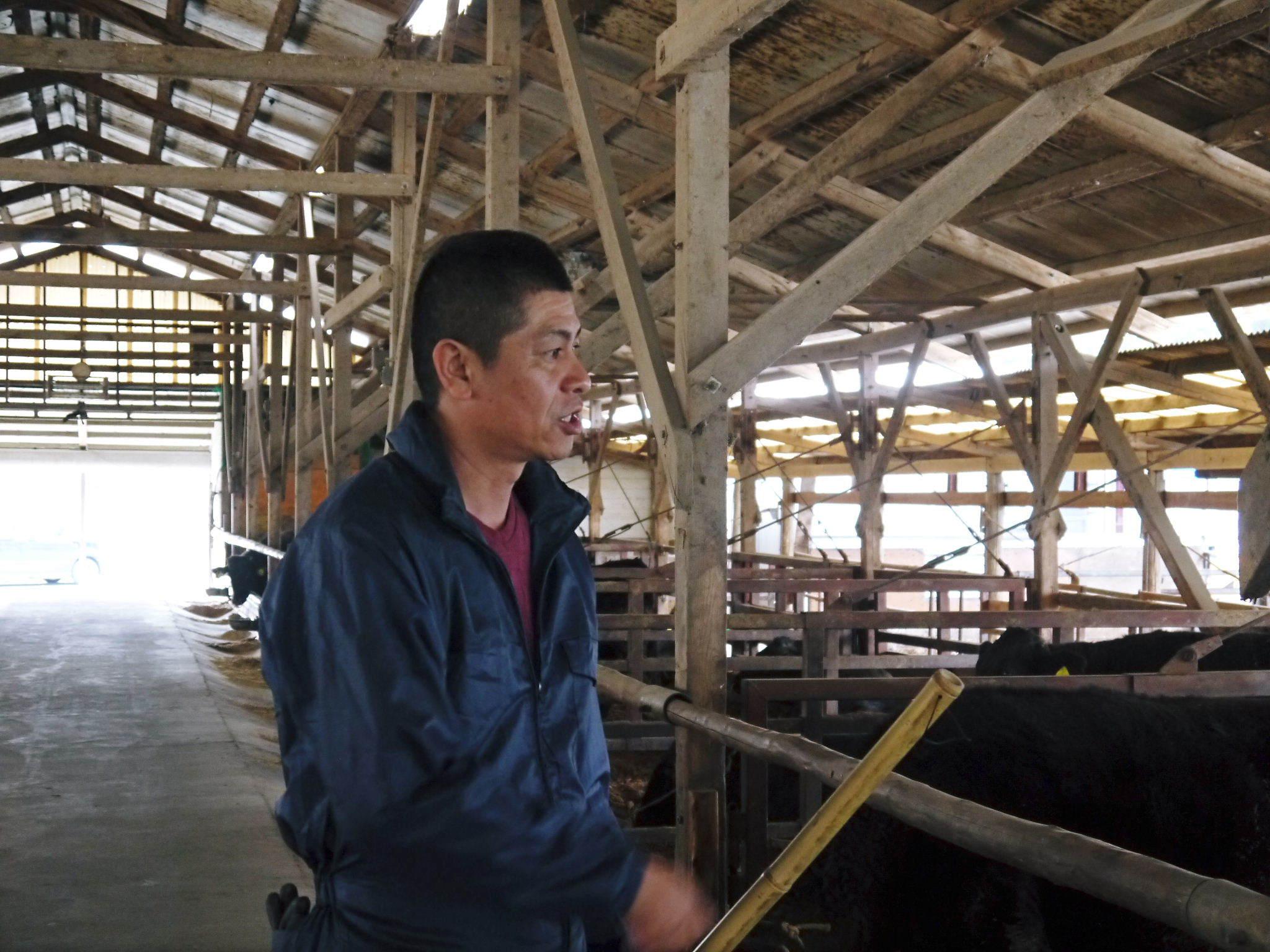 熊本県産黒毛和牛 絶品黒毛和牛を育てる「中野畜産」さんのファミリー紹介_a0254656_17195451.jpg