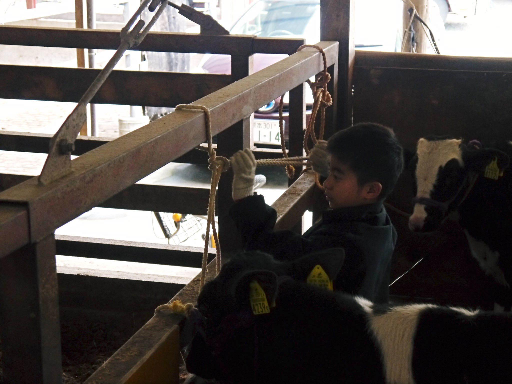 熊本県産黒毛和牛 絶品黒毛和牛を育てる「中野畜産」さんのファミリー紹介_a0254656_17244017.jpg