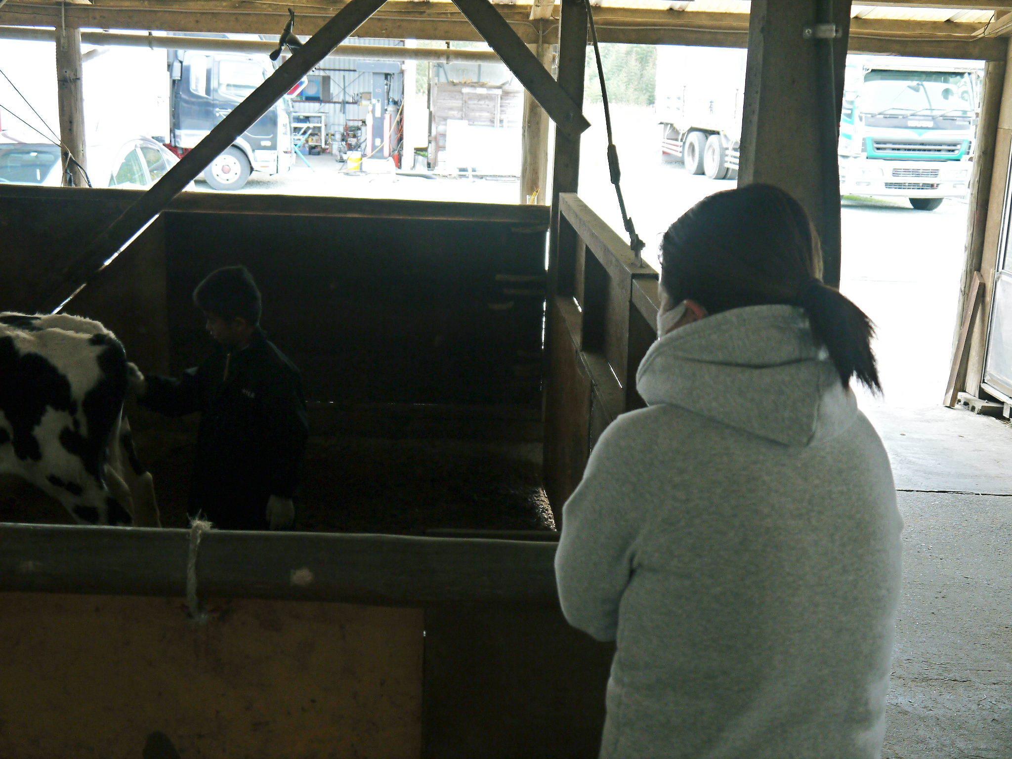 熊本県産黒毛和牛 絶品黒毛和牛を育てる「中野畜産」さんのファミリー紹介_a0254656_17335234.jpg