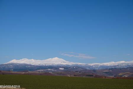 就実の丘と山並み~4月の就実_d0340565_19511596.jpg