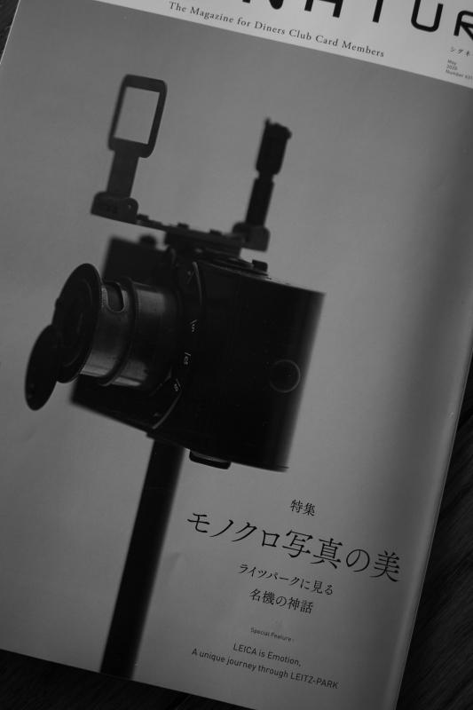 magazine_d0349265_13344181.jpg