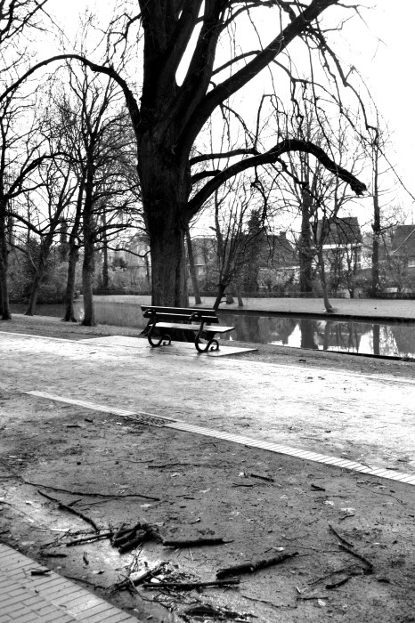 椅子のある風景_f0267188_14553798.jpg