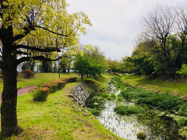 散歩道_e0061304_11481748.jpg