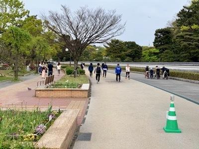 福岡市大濠公園(ファイネストピアノ福岡徒歩圏内の散歩スポット1)_c0105443_14282572.jpg