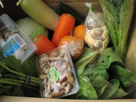 げんきの郷自慢の新鮮野菜ボックス ネット販売開始_c0141652_15252452.jpg