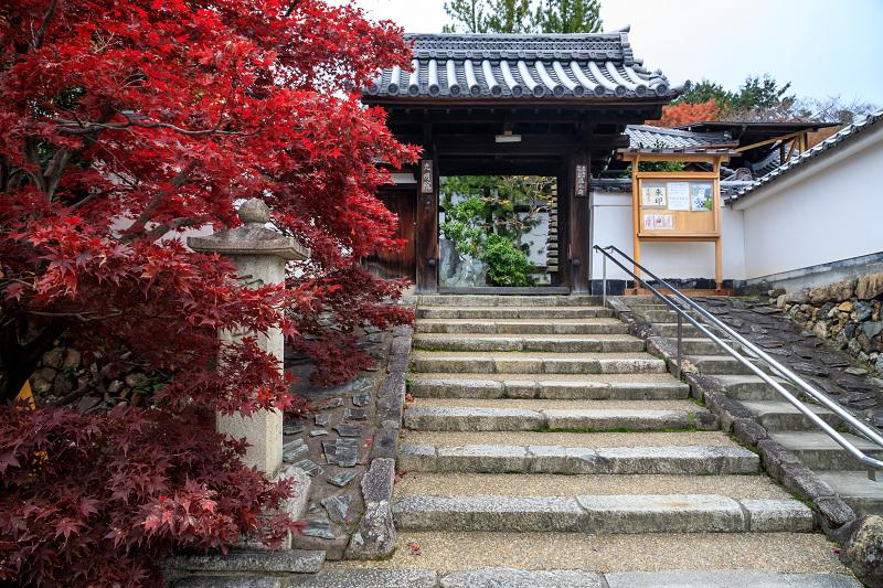 紅葉が彩る京都2019 大好きなお庭の秋景色(光明院)_f0155048_21404533.jpg