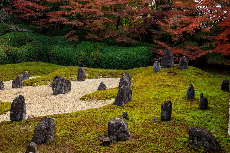 紅葉が彩る京都2019 大好きなお庭の秋景色(光明院)_f0155048_2143194.jpg