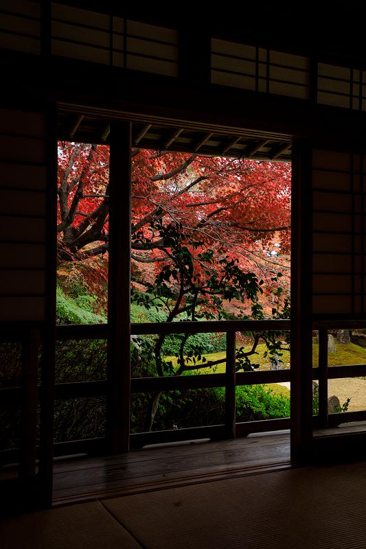 紅葉が彩る京都2019 大好きなお庭の秋景色(光明院)_f0155048_21465889.jpg