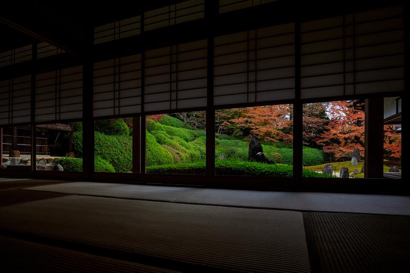 紅葉が彩る京都2019 大好きなお庭の秋景色(光明院)_f0155048_21474043.jpg