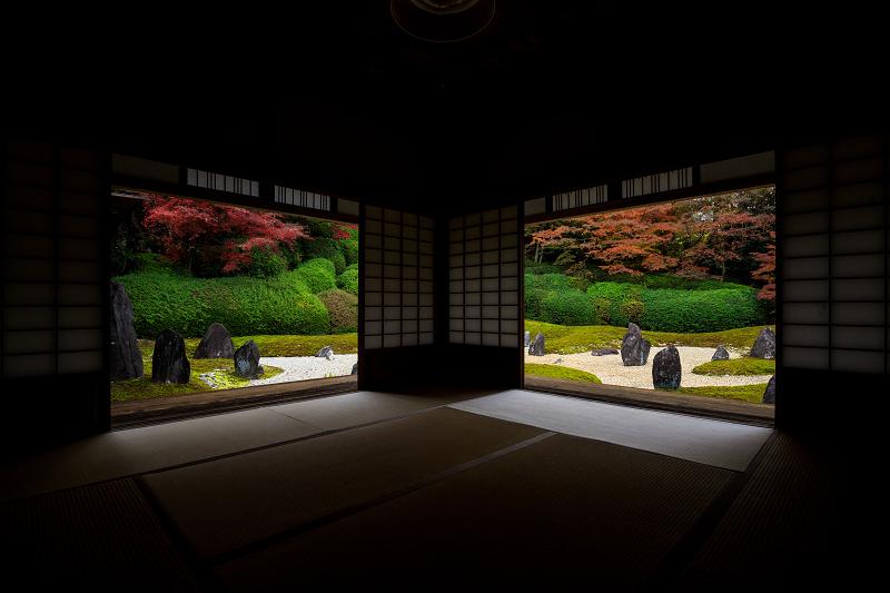紅葉が彩る京都2019 大好きなお庭の秋景色(光明院)_f0155048_2150161.jpg