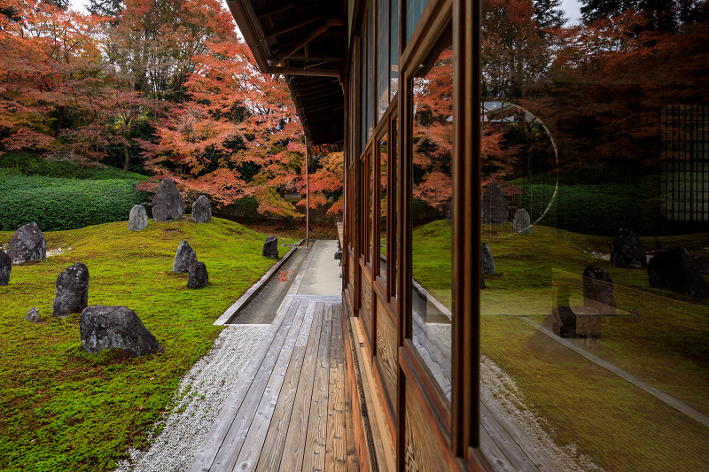 紅葉が彩る京都2019 大好きなお庭の秋景色(光明院)_f0155048_21533184.jpg