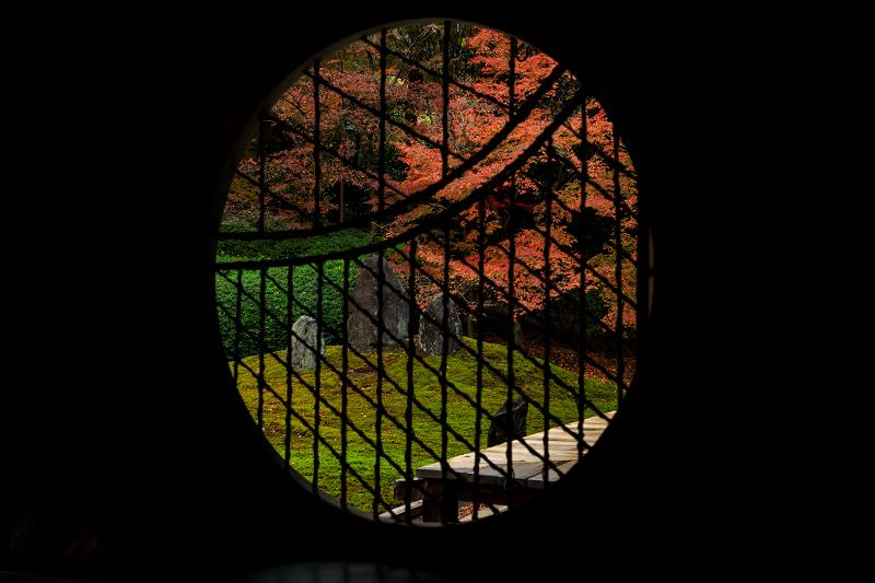 紅葉が彩る京都2019 大好きなお庭の秋景色(光明院)_f0155048_21543625.jpg