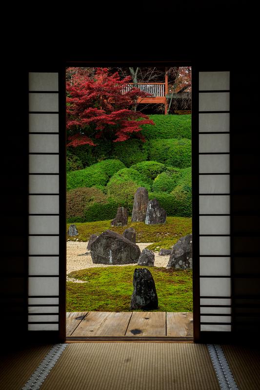 紅葉が彩る京都2019 大好きなお庭の秋景色(光明院)_f0155048_21554979.jpg