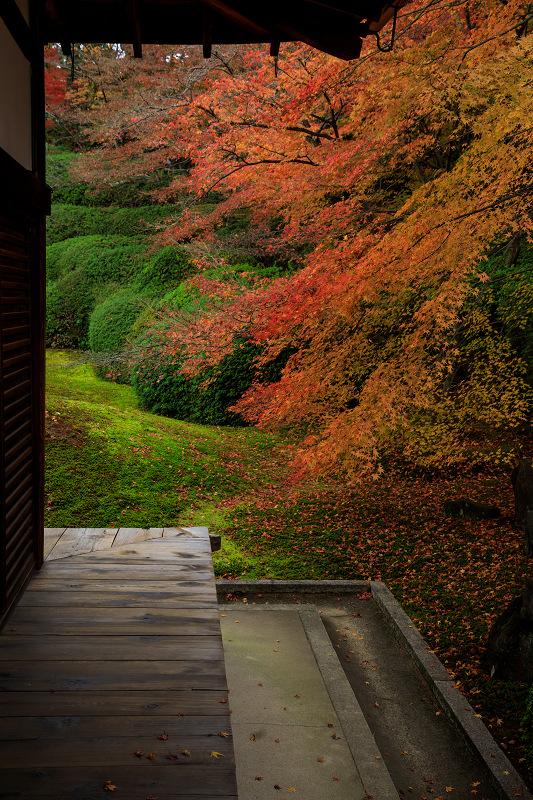 紅葉が彩る京都2019 大好きなお庭の秋景色(光明院)_f0155048_21565575.jpg
