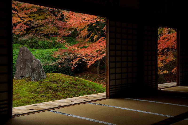 紅葉が彩る京都2019 大好きなお庭の秋景色(光明院)_f0155048_2156692.jpg